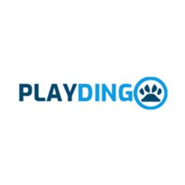 Playdingo