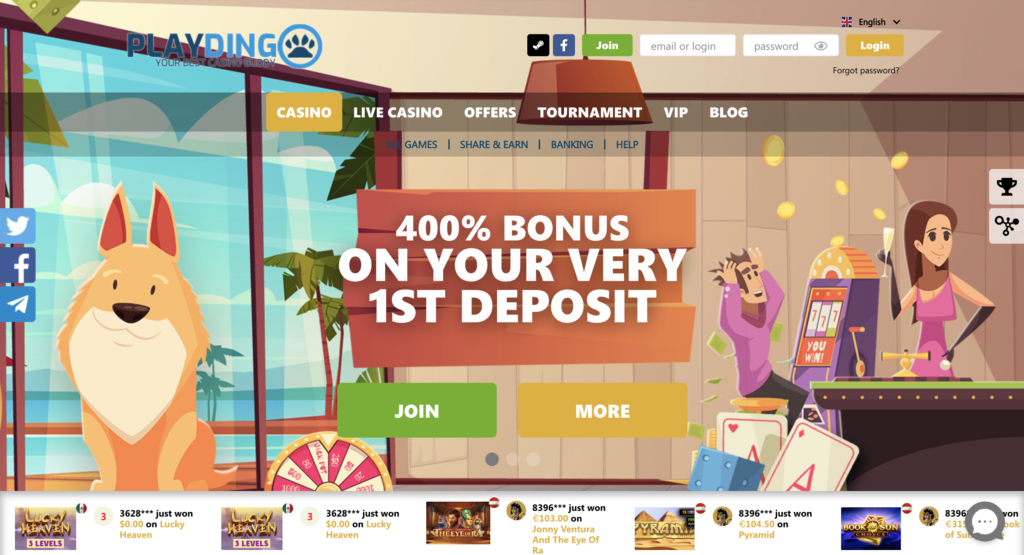 playdingo casino review